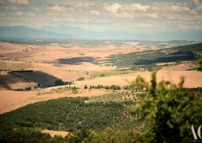 View from Volterra Villa wedding